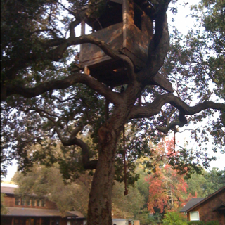 Peninsula School this morning