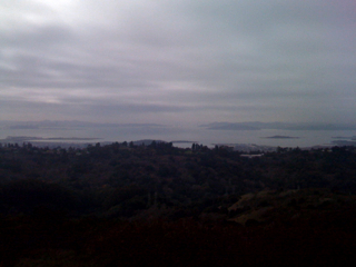 Greetings from Peace Grove, Tilden Park