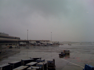 SFO in the rain